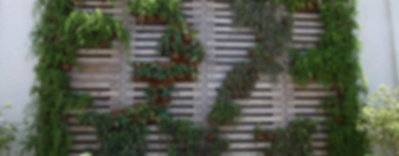 Nowoczesny ogród od Denise Barretto Arquitetura Nowoczesny