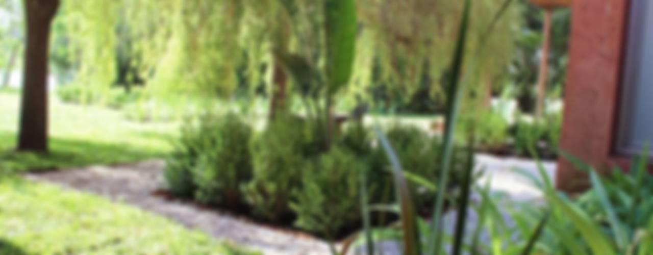 Jardines de estilo moderno de BAIRES GREEN Moderno