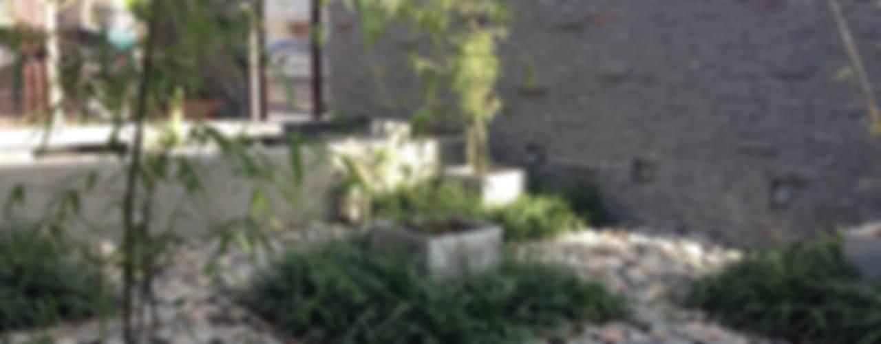 Jardines asiáticos de BAIRES GREEN Asiático