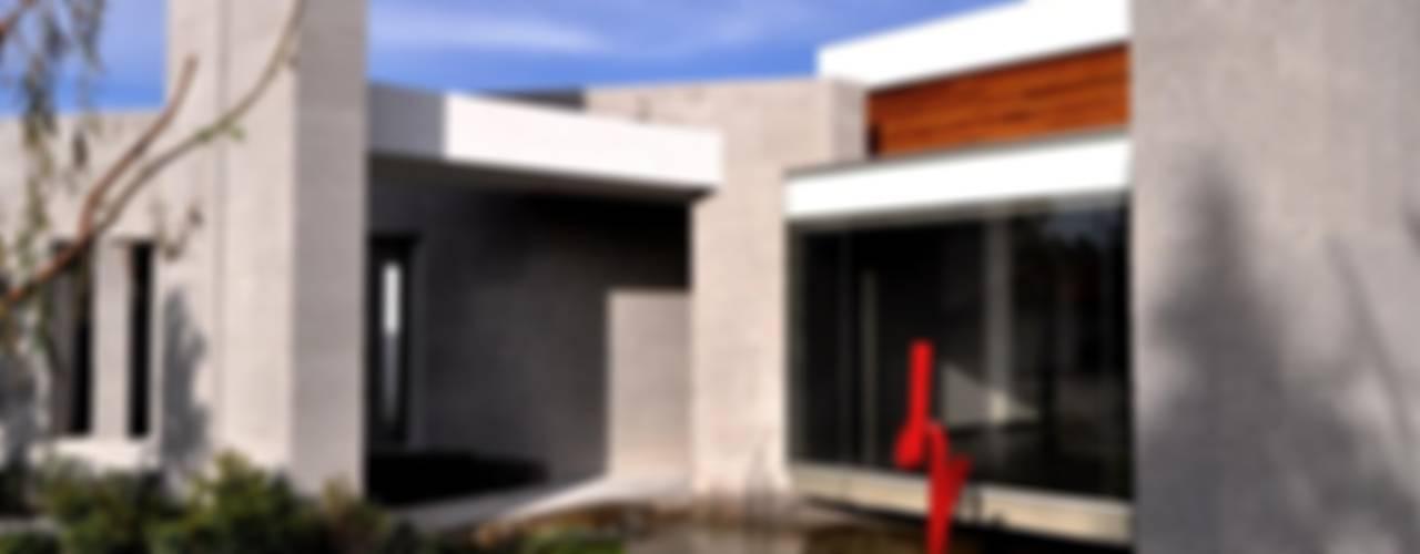 Jardines modernos: Ideas, imágenes y decoración de Vito Ascencio y Arquitectos Moderno