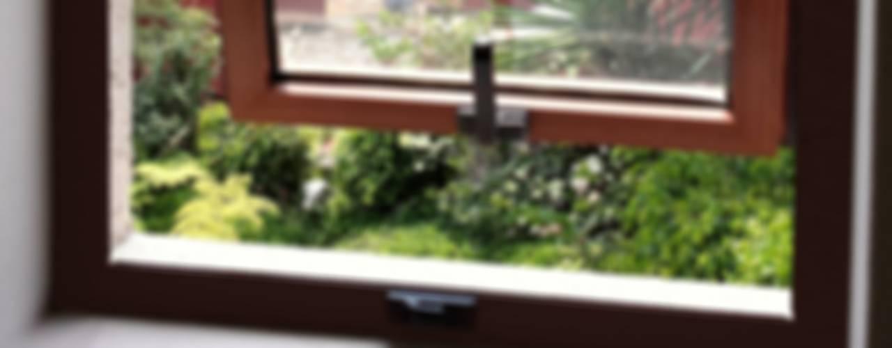 Окна в . Автор – Productos Cristalum , Классический