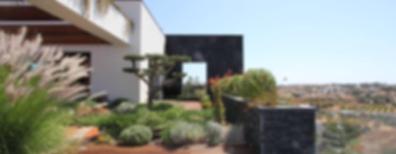 Modern style gardens by Riscos & Atitudes, Lda Modern