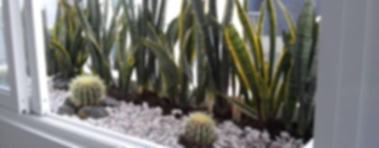 Jardineras casa zamora:  de estilo  por Bamboo design & garden