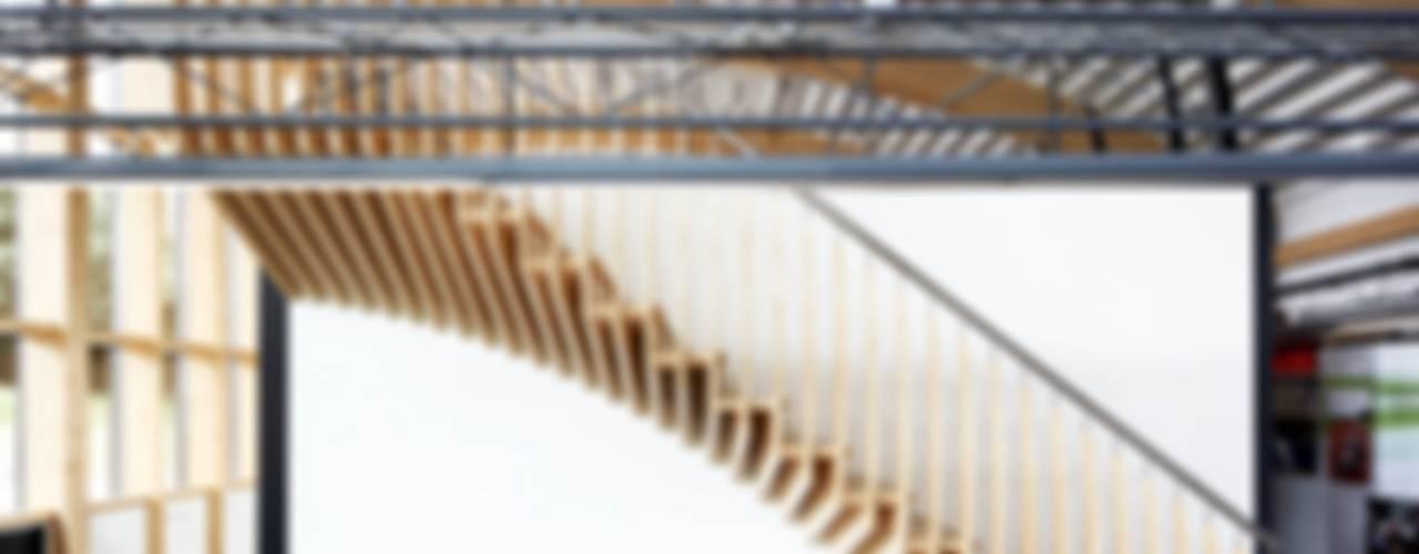 MindStep by EeStairs® von EeStairs | Stairs and balustrades Skandinavisch