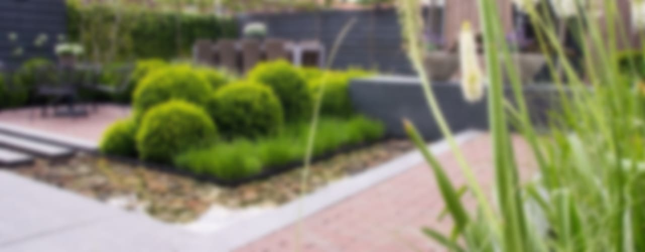 Tuin in Rhoon Hoveniersbedrijf Tim Kok Moderne tuinen