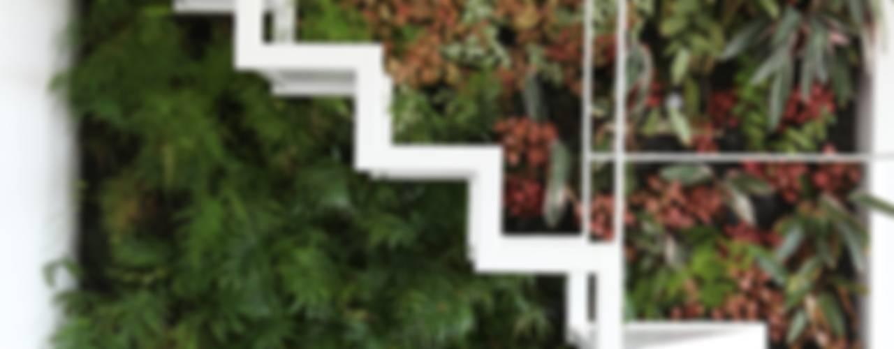 Jardines de estilo  por LC Vertical Gardens,