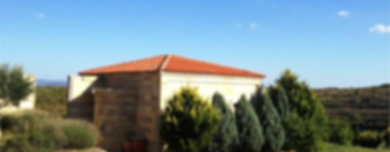 T2 Evi Modern Evler DAFNI MİMARLIK Modern