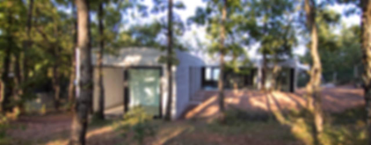 Casa en el bosque Casas de estilo minimalista de Comas-Pont Arquitectes slp Minimalista