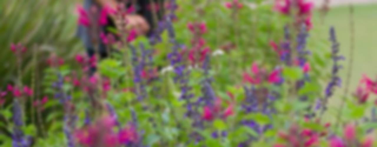 Nowoczesny ogród od LAS MARIAS casa & jardin Nowoczesny