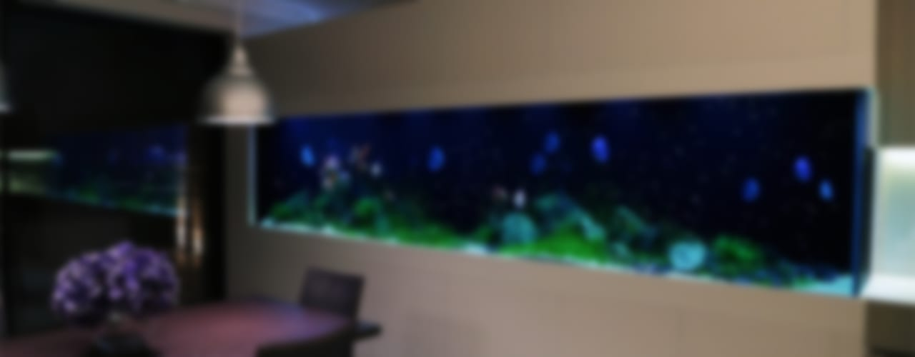 Comedores de estilo  por Aquarium Architecture