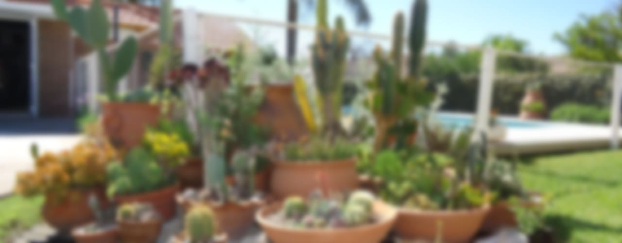 Jardines de estilo  por milena oitana