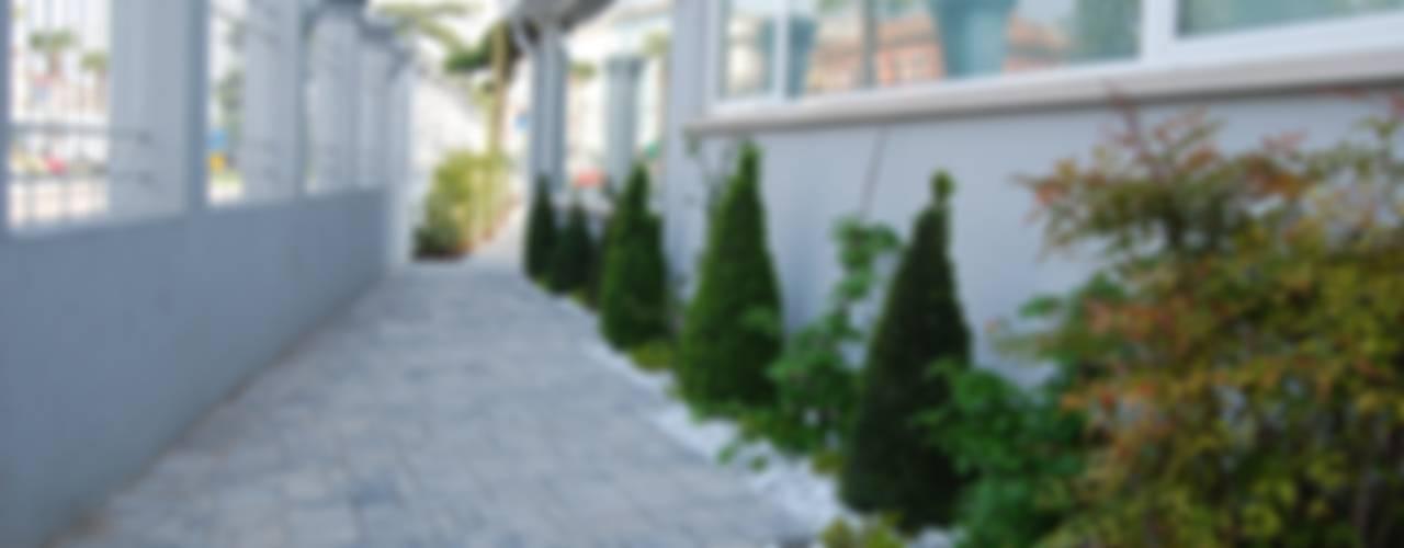 Jardines modernos de Lugo - Architettura del Paesaggio e Progettazione Giardini Moderno
