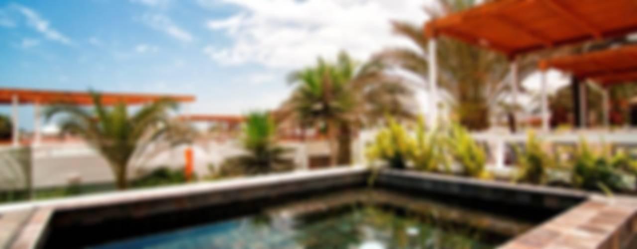 Casa Seta Modern pool by Martin Dulanto Modern