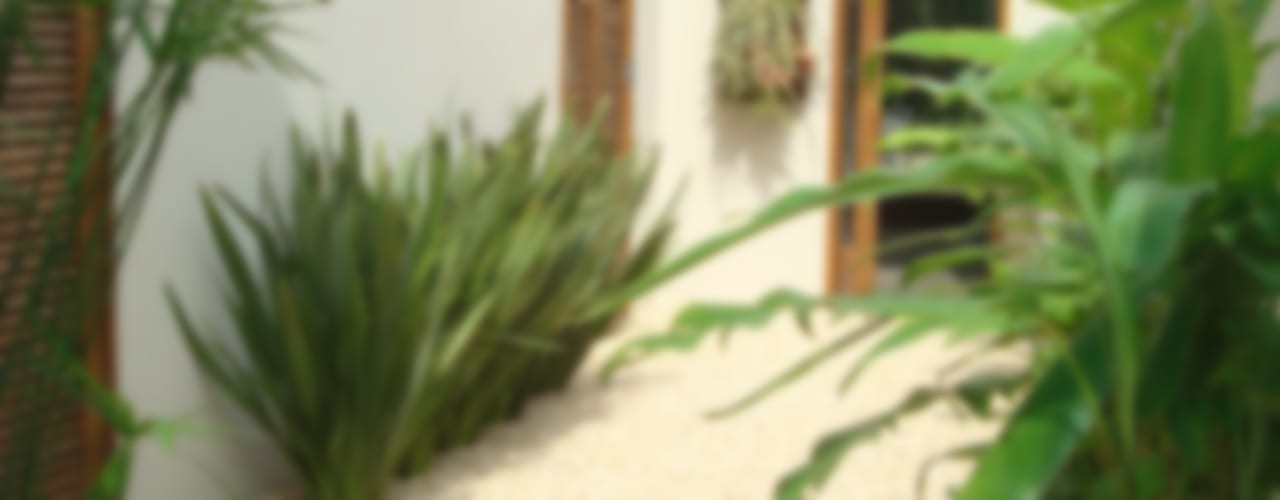 Jardines tropicales de Renata Villar Paisagismo e Arranjos Florais Tropical