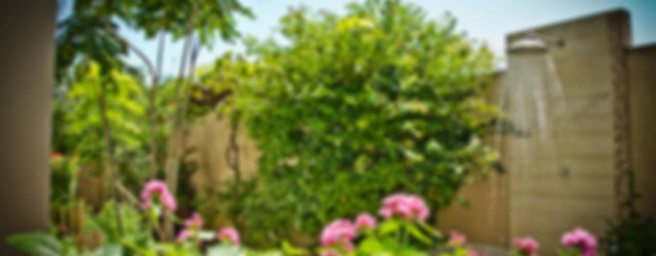 Jardines de estilo rústico por Felipe Mascarenhas Paisagismo