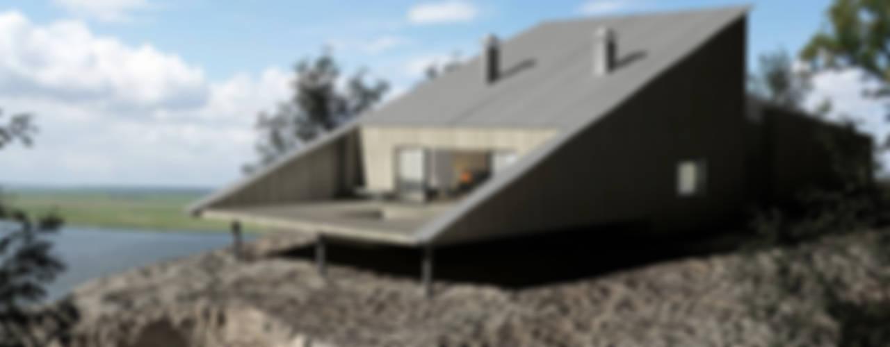 Industrial style houses by BIG IDEA studio projektowe Industrial