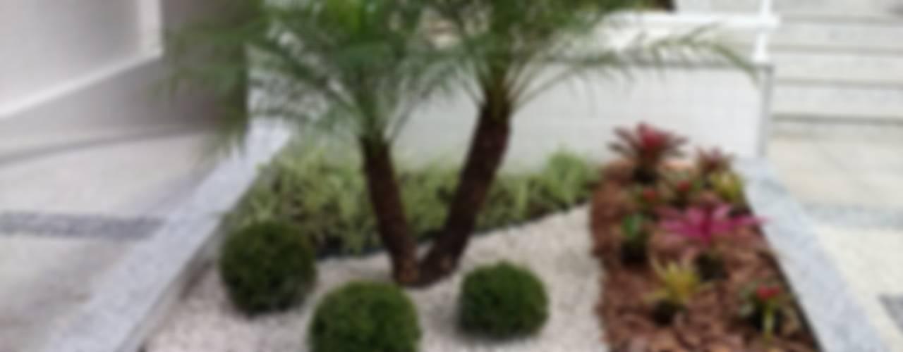 Garten von Mateus Motta Paisagismo, Tropisch