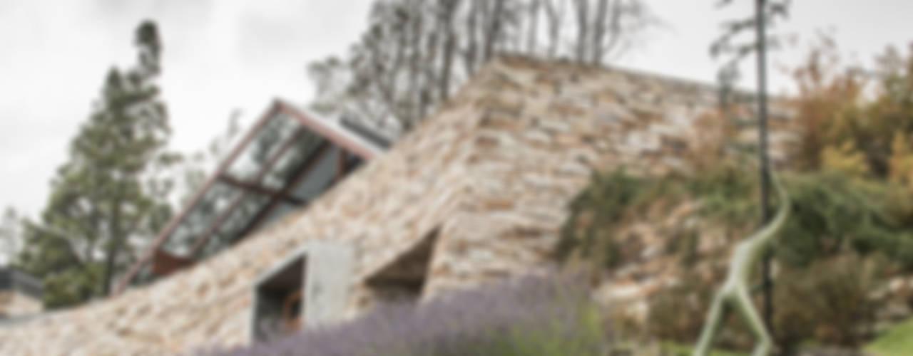 Vivienda Unifamiliar Jardines modernos: Ideas, imágenes y decoración de Sidoni&Asoc Moderno