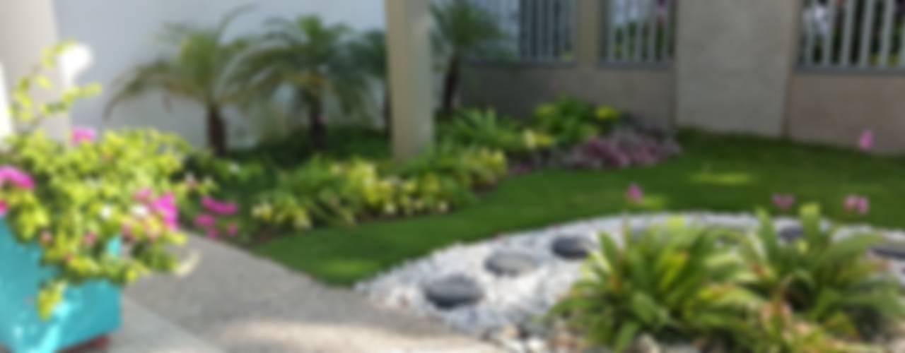 homify Jardines tropicales