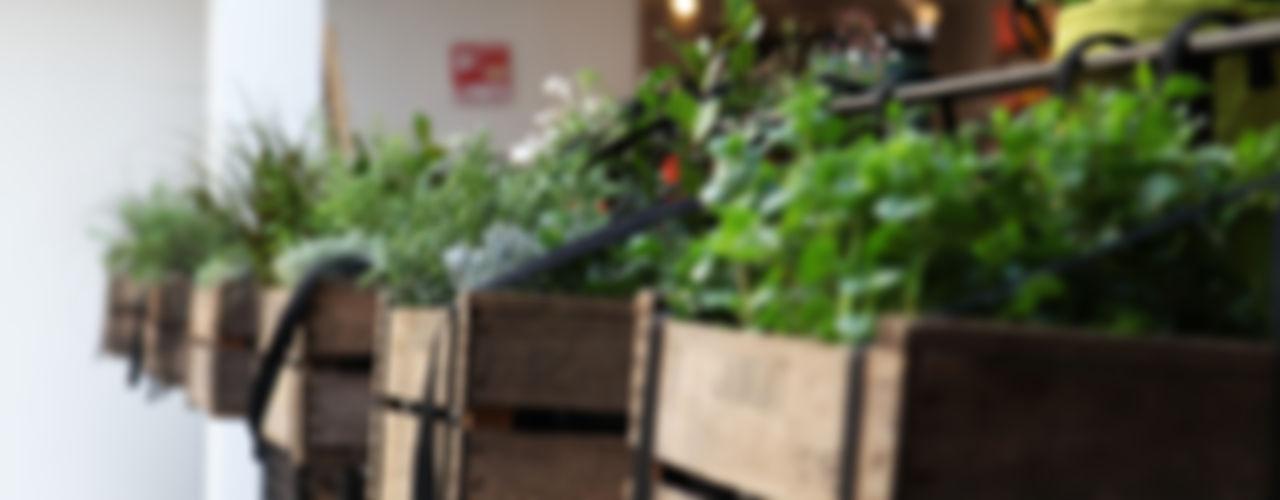 BACSAC® Балкони, веранди & тераси Аксесуари та прикраси