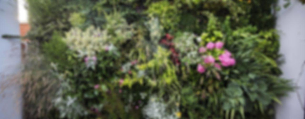 Jardín Vertical Sostenible/ vertical urban gardens thesustainableproject Jardines de estilo mediterráneo