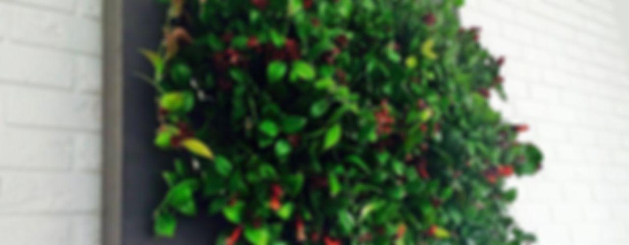 FLORABO2 Внутрішнє озеленення