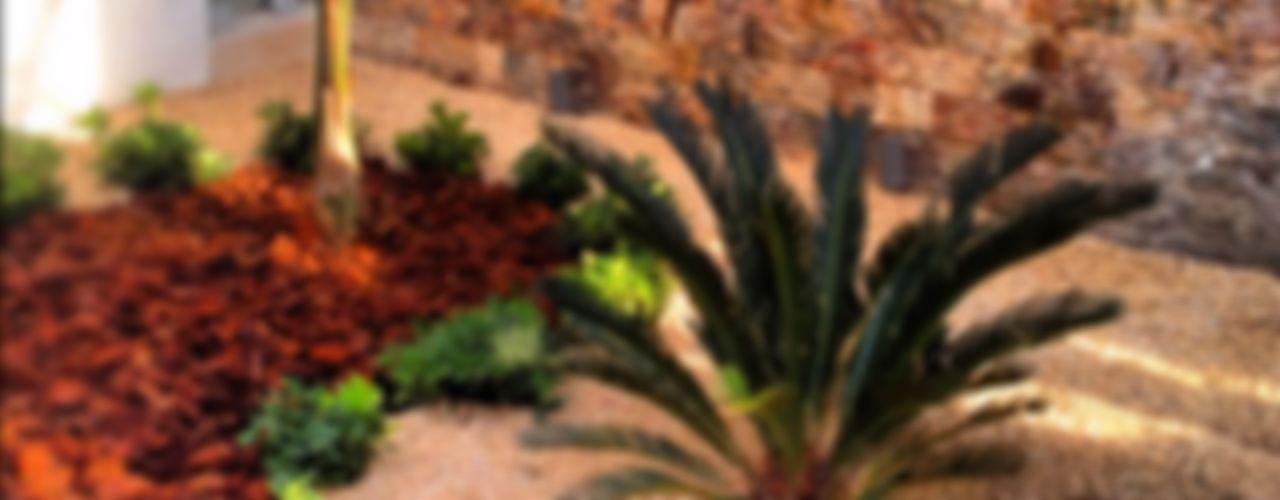 CASA CR-180 EcoEntorno Paisajismo Urbano Jardines minimalistas