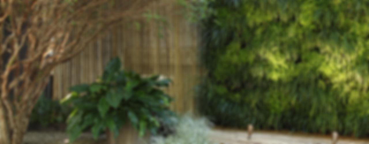 Quadro Vivo Urban Garden Roof & Vertical Tropical style garden