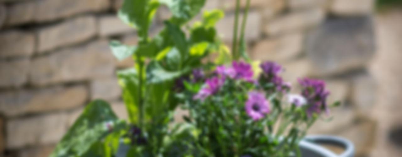 Outdoor Living Garden Trading JardínJarrones y macetas