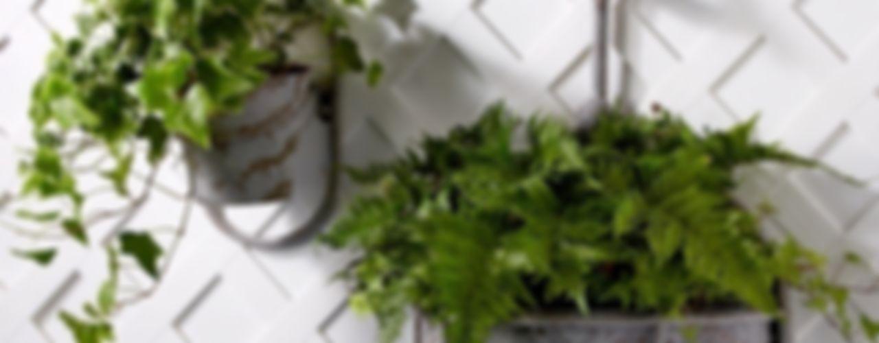 Ella James Garden Accessories Range ELLA JAMES GiardinoAccessori & Decorazioni