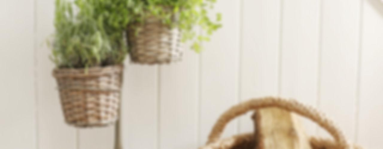 Ella James Garden Accessories Range ELLA JAMES Garden Plant pots & vases