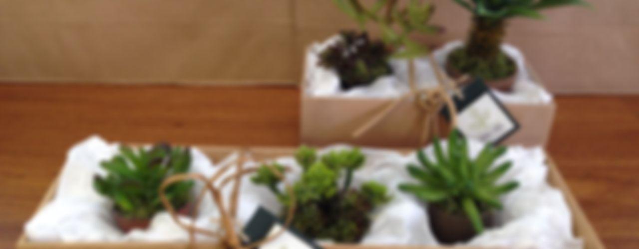 Jardins Permanentes Junia Lobo Paisagismo Jardins de inverno campestres