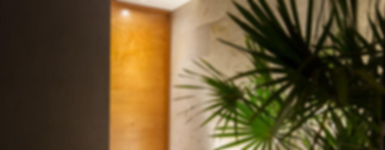 LGZ Taller de arquitectura Puertas y ventanas de estilo moderno Madera Acabado en madera