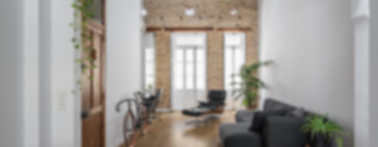 amBau Gestion y Proyectos Casas modernas: Ideas, diseños y decoración