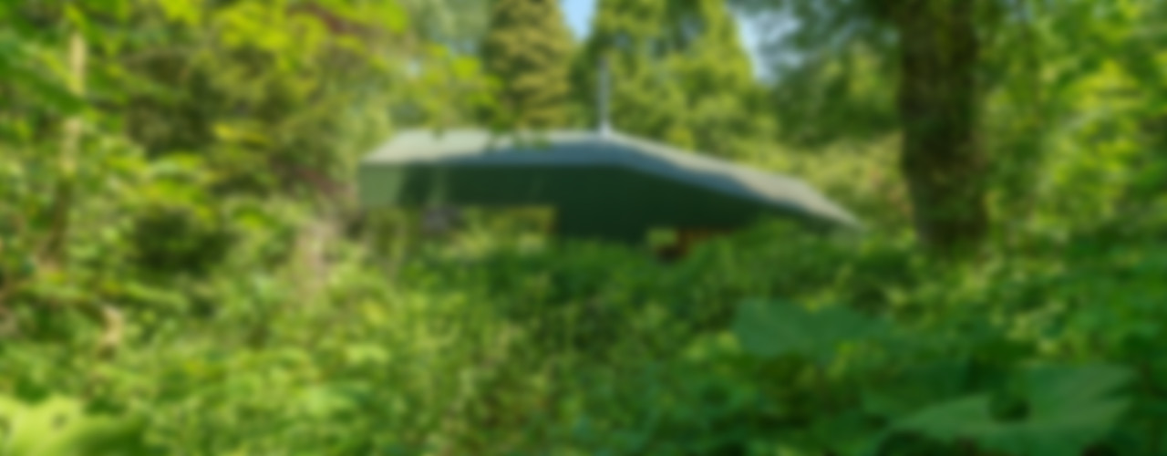 Thoreau's Cabin cc-studio Country style house Aluminium/Zinc Green