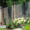 Sichtschutz Ellipso: moderne Häuser von Braun & Würfele - Holz im Garten
