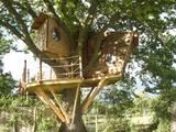 Squirrel Design Tree Houses Limited: rustik tarz tarz Bahçe