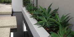 Applecross: modern Garden by Project Artichoke