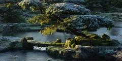 die japanischen Gärten des Zenklosters Liebenau im Winter:  Veranstaltungsorte von japan-garten-kultur