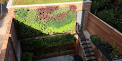 The completed living wall:   by Jane Harries Garden Designs