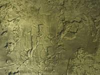 Scrusted green:   door Dofine wall | floor creations