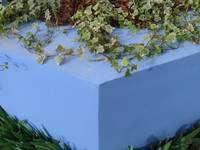 Il pozzo: Giardino in stile in stile Classico di Sergio Prozzillo Ass.ti