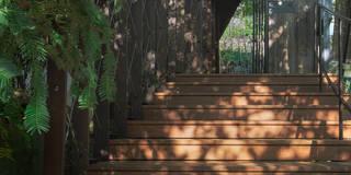壁面緑化のアプローチ: UZUが手掛けた家です。