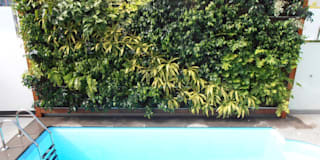 7 detalles para una pared tropical: Paredes y suelos de estilo tropical de Jardineria 7 islas
