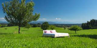 Ein Bett im Kornfeld:   von Schreinerei Haas Mathias