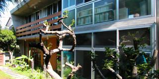 庭と一つになる家: ユミラ建築設計室が手掛けた庭です。
