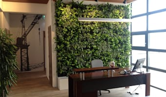 Huisdecoratie ideeën homify