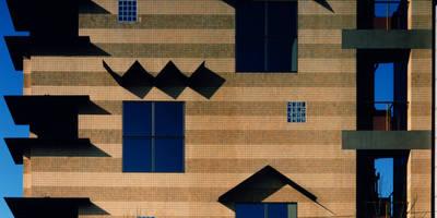 地層の表情: ユミラ建築設計室が手掛けた壁&フローリングです。