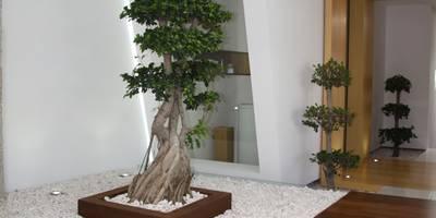 RS Design House : Habitações  por Risco Singular - Arquitectura Lda