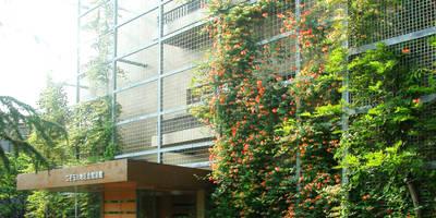 緑の環境の集合住宅: ユミラ建築設計室が手掛けた家です。